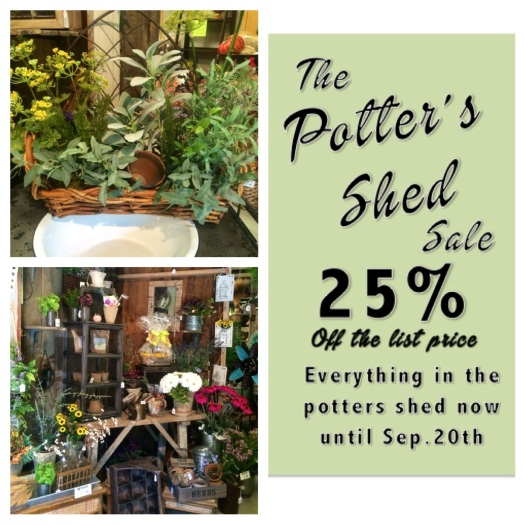 pottersshed2