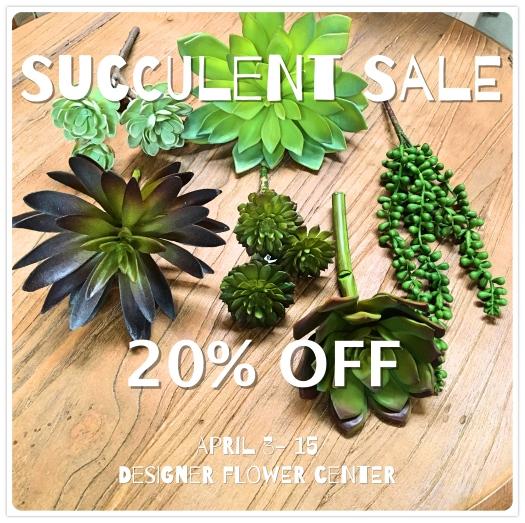 DFC Succulent Sale