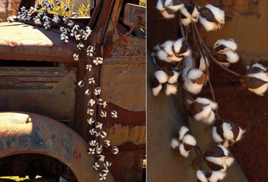 cottongarland