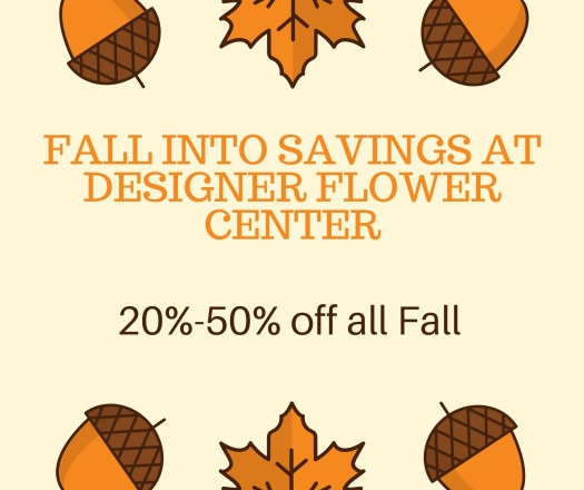 20-50 off select Fall